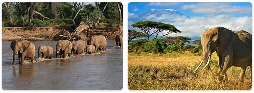 Major Landmarks in Kenya